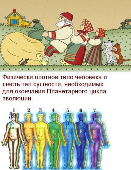репка1